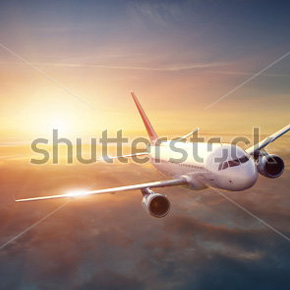 Hotel and Flight discount